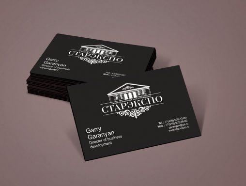 Дизайн визиток для компании Стар-Экспо